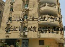 كافيه مؤجر 25الف شهري البيني الهرم الرئيسي 3مداخل 3مليون و500الف
