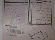 أرض سكنية بمربع800م  ظهر 2