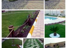 NEW PLANTS AND LANDSCAPING L. L. C