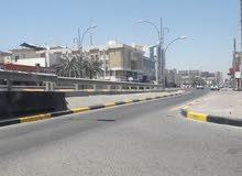 شقه حي الجزائر