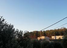 منزل وقطعة ارض للبيع في جرش