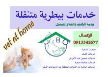 علاج الببغاء و القطط