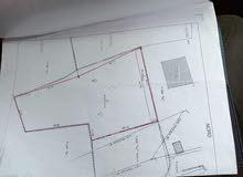 قطعة ارض للبيع بالمنطقة السياحيةجربة ميدون 3000م بها رخصة بناء و الضوء و الماء في الناظور ر
