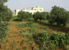 بيت ومزرعه للبيع غرب الياروت