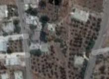 556متر أرض مي حوفا المزار فريم من شارع الميه