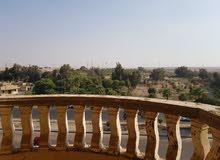 حدائق الأهرام، البوابة الرابعة