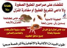 مكة الدولية لمكافحة الحشرات 50200781
