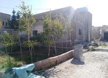 بيت مستقل في قرية مهنا ابو نصير