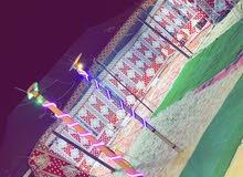 مخيم المحبه الإيجار بدمام