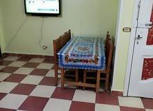 شقة فاخرة للايجار مفروش -ميامى - الدور 8