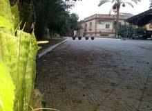 طريق الشوك بالقرب من مستشفى الرويال وارض المرح