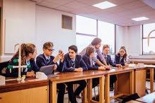 مجموعة معلمات ومعلمين للتقوية الدراسية لجميع المواد من صف ( 1-12 )