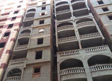 بمقدم 50000 إمتلك شقة علي شارع أبويوسف الرئيسي