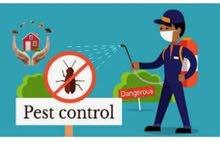 الألمانيه لخدمات التنظيف ومكافحه الحشرات