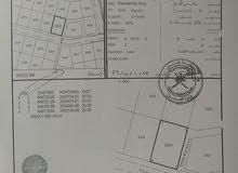 أرض سكنية في العامرات1/8 للبيع