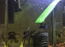 aquarium fro sale