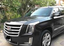 Automatic 2018 Escalade for rent