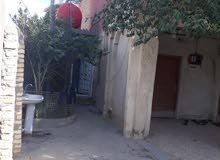 المعقل حي طارق شارع 15 الدار ركن