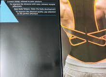 حزام استقامة الظهر