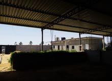 موقع في طريق الحامية للايجار مع سكن