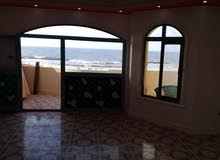 an apartment for sale in Alexandria Nakheel