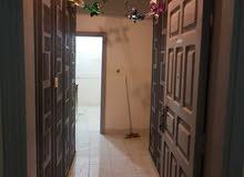 شقة للايجار بحي الربوة غرفتين بدون صاله