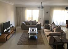 Furnished duplex in the heart of Dokki for long term rent