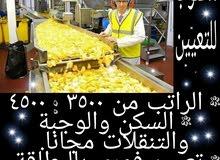 مطلوب للتعيين عمال إنتاج فى مصانع شيبسى