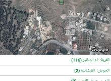أرض 750م في ام الدنانير القيشانيه اراضي شمال عمان