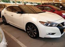 White Nissan Maxima 2016 for sale