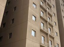 للايجار ثلاث عمارات بالمهبوله بجوار بعض للشركات