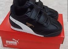 احذية رياضية للاطفال ماركة بومة ، جملة وقطاعي .