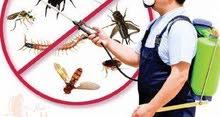 مكافحة الحشرات والقوارص
