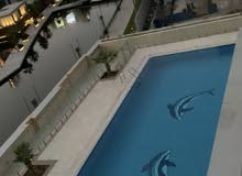 furnished studio with great canal and swimming pool  view to share with a lady