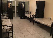 مطلوب 4 شباب عرب للسكن في استوديو في مويلح التجاريه قرب من نادي الثقه ومجمع المطاعم