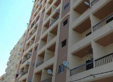 apartment area 85 sqm for sale