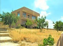 مزرعة على طريق جرش-اربد12دونم وبيت240م