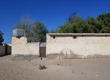 ارض في بركاء السوادي شمال يوجد بها منزل قديم وبئر ماء وجميع الخدمات وتصلح لي است