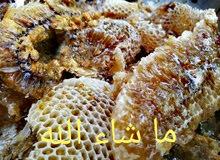 للبيع عسل برم 2018