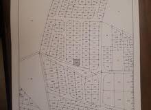 قطعة أرض للبيع شرق عمان منطقة البيضاء