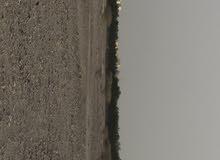 ارض صناعيه 4000 متر في بركا سقسوق