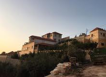 قصر للبيع في الاردن السلط مليونين دينار اردني