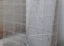 For Sale Birds Big Cage