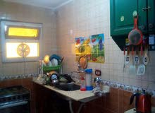 for rent in Alexandria Agami apartment