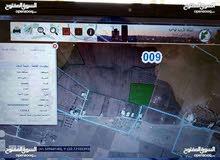 مادبا-الفيصليه-الجازل-غرب دوارالطياره 2كم  مزرعه 13دونم للبيع