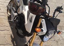 Honda grom 2016