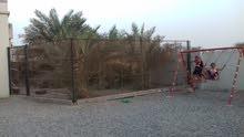 ولاية السويق بطحاء هلال شرقي مركز الشرطة
