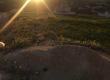 قطعة ارض للبيع شفا بدران حوض عيون الذيب