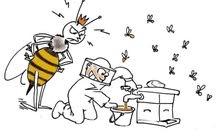 عسل طبيعي 2020