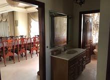 شقة فارغة للايجار في الرابية  330م  طابقية